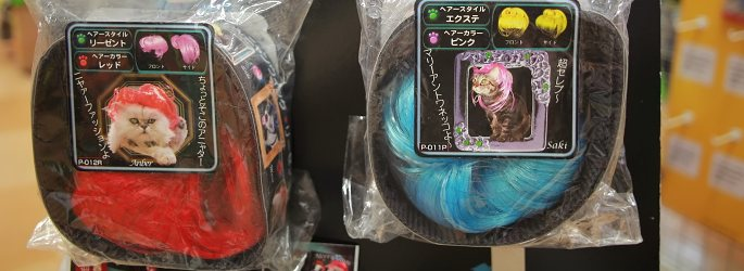 A colorful wig for cats (and dogs)!