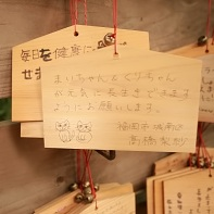 An ema with a prayer for a healthy and long life of the two cats Mai-chan and Kuri-chan.