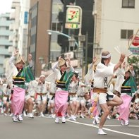 A large group of Awa Odori dancers approaches.